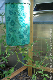 Topsy Turvy Upside Down Tomato Planter