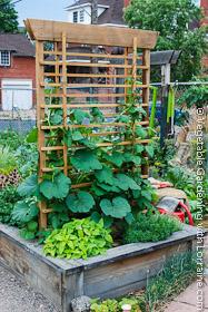 Japanese-style cedar vegetable trellis built into a raised bed garden.