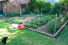 My Vegetable Garden in June, with Chris and Nikki