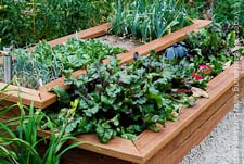 Go to Raised Bed Vegetable Garden