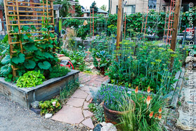 Built In Garden Trellis on Raised Beds