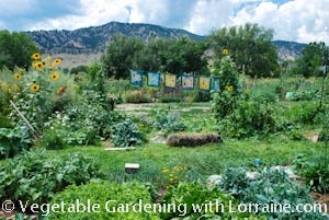 Sustainable Organic Garden in Boulder, CO