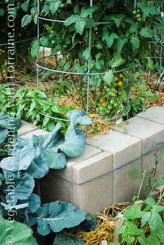 333x500 Concrete Block Raised Bed