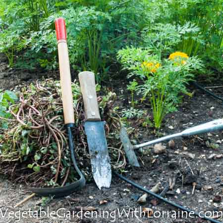 There are eight ways to control weeds organically, and handweeding is only one of them.
