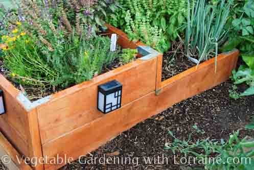 Raised Bed Garden Design 3