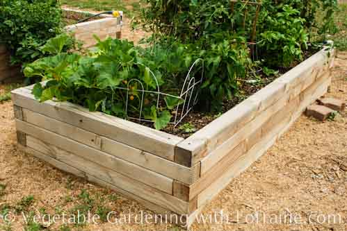 500x333 4x4 Raised Bed Garden