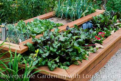 Raised Bed Vegetable Gardens with Trellises to Maximize Space