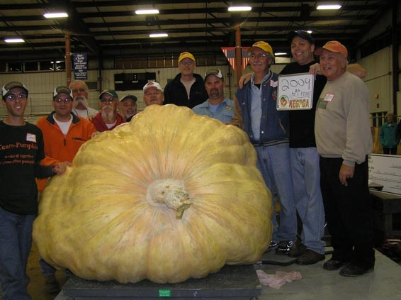 World record pumpkin grown by Ron Wallace in 2012, weighed in at 2009 pounds