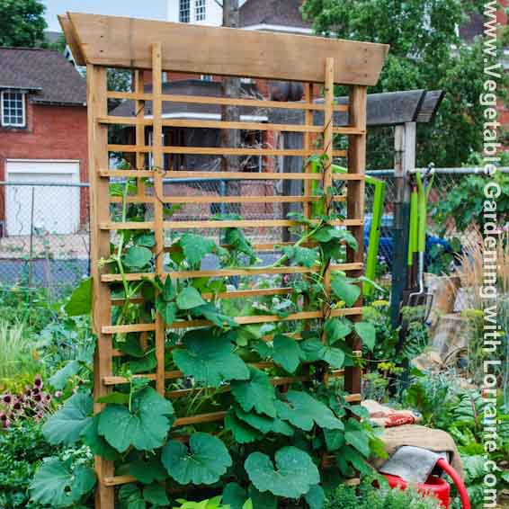 Vertical Vegetable Gardening Ideas how to build a vertical vegetable garden Vegetable Gardening Know How From Beginning To Master Gardener