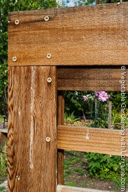 Corner Detail, Cedar Bean Trellis