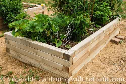 500x333 4x4 Raised Bed Garden